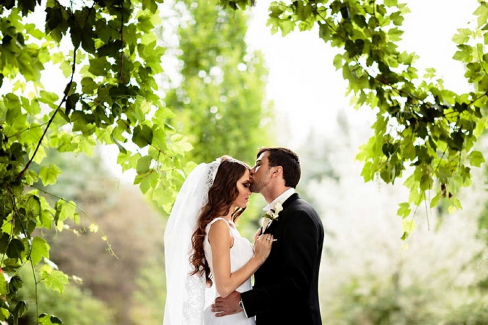 Свадебные банкеты в летний период в Динопарке